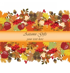 Autumn background with decorations vector image vector image