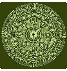 circle 1 2 vector image vector image