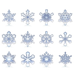 Glossy snowflakes vector