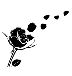 Silhouette of the flower with rose petals fly off vector