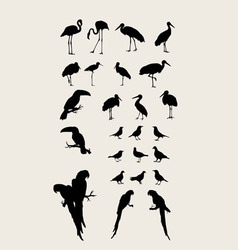 Heron and bird silhouettes vector