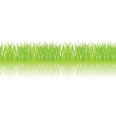 Seamless of green grass vector