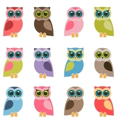 set of colorful owls and owlets vector image vector image