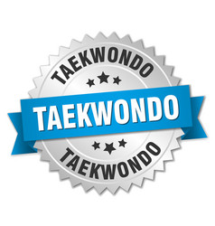 Taekwondo round isolated silver badge vector