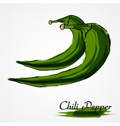 Green chili pepper vector