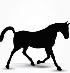 Horse silhouette in prancing walk pose vector