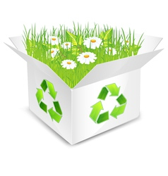 eco box flowers and grass vector image vector image