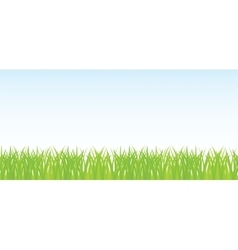 seamless of green grass vector image