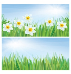 spring flowers banners vector image vector image