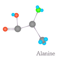 alanine 3d molecule chemical science vector image