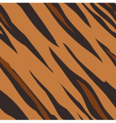 Tiger skin print pattern vector