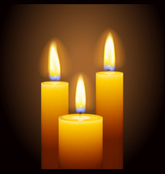 Set of three burning candles vector
