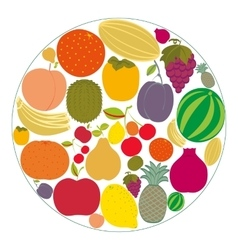 Flat fruit icons gathered in a circle vector