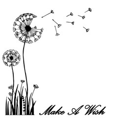 hand drawn greeting card dandelion flower blow vector image vector image