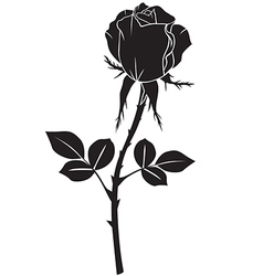 Rose black vector