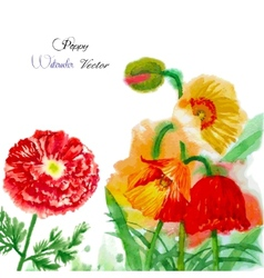 Watercolor background with red poppy-02 vector