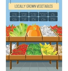 Supermarket shelves of vegetables vector