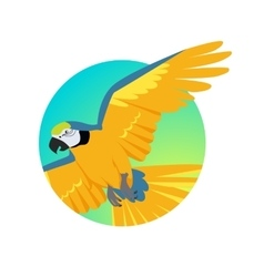 Flying ara parrot flat design vector