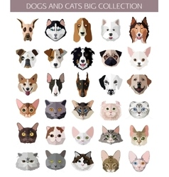Set of flat popular Breeds of Cats and Dogs icons vector image vector image