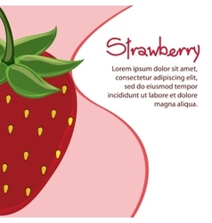 Strawberry fruit and wave design vector