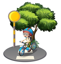 A young boy at the pedestrian lane vector image
