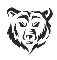 black bear vector image