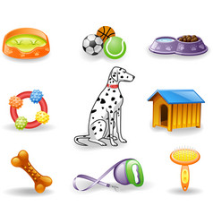 Dog care icons vector