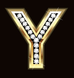 y bling vector image vector image