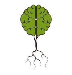 brain plant green vector image