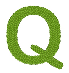 Four leaf clover of alphabet letter q vector