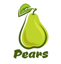 Pear fruit with leaf vector