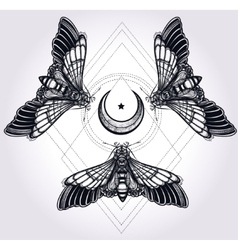 Butterflies with moon sacred geometry circle vector