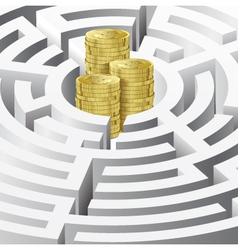 Money in the maze vector image