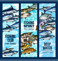 banners for fishing or fisher sport club vector image