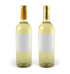 Set realistic bottles of white wine vector