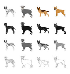 Dalmatian terrier shepherd and other web icon vector