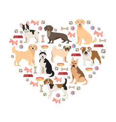 dog lovers flat style collection cartoon dogs vector image vector image