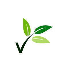 letter v vegetarian leaf logo vector image