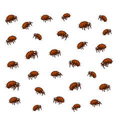 many fleas vector image vector image