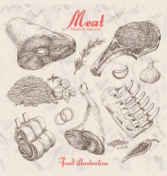 set of hand drawn meat isolated vector image