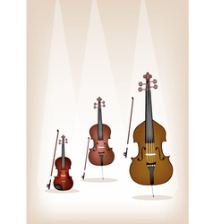 Musical instrument strings on brown background vector