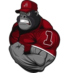 Terrible gorilla athlete vector