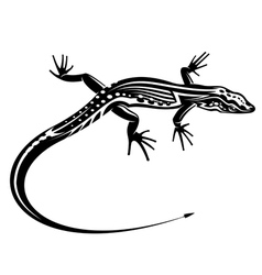 Black lizard with natural decorative ornament vector image vector image