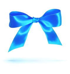 Blue glossy silk bow isolated on white vector image vector image