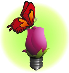 eco bulb flower with butterfly vector image vector image