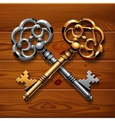Golden and silver crossed shiny vintage keys on vector