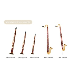Various kind of clarinets vector