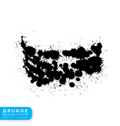 grunge brush stroke vector image