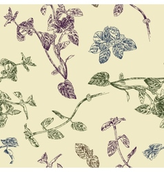 Seamless floral pattern with peppermint sprigs vector