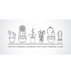 Linear design potted flowers elements of a vector